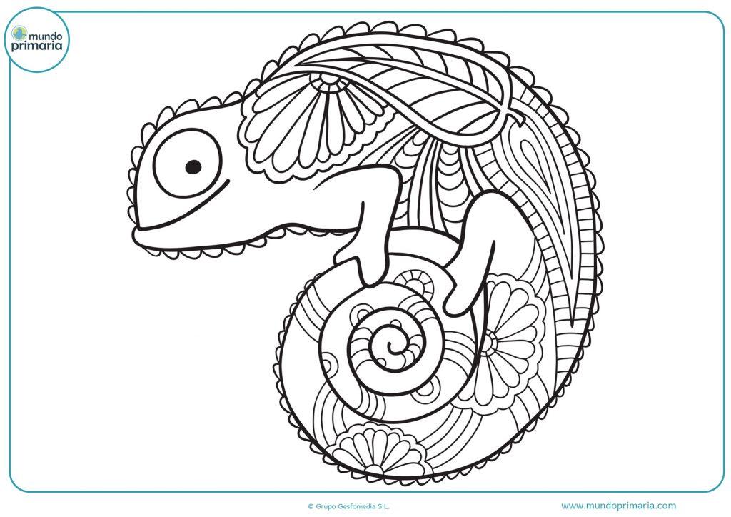 Mandala de un camaleón para colorear
