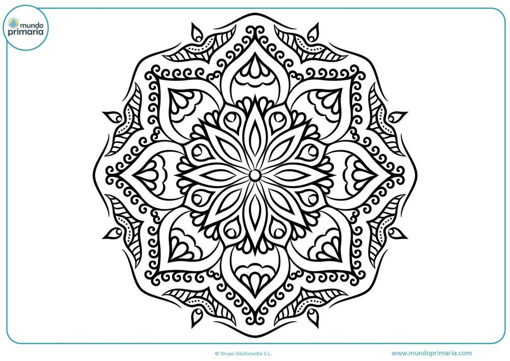 Mandala de distintas formas de flores