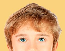 TDAH-corteza-prefrontal