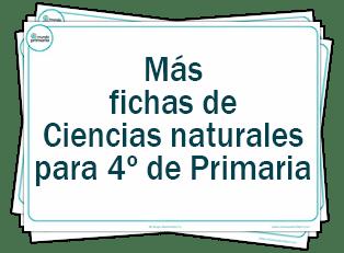 Ejercicios de ciencias naturales