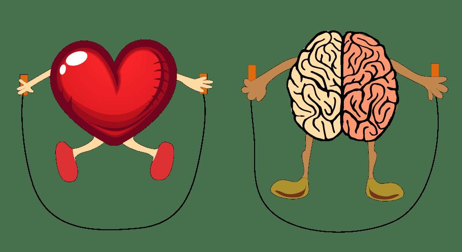 Un corazón y un cerebro entrenandose con una cuerda saltando a la comba