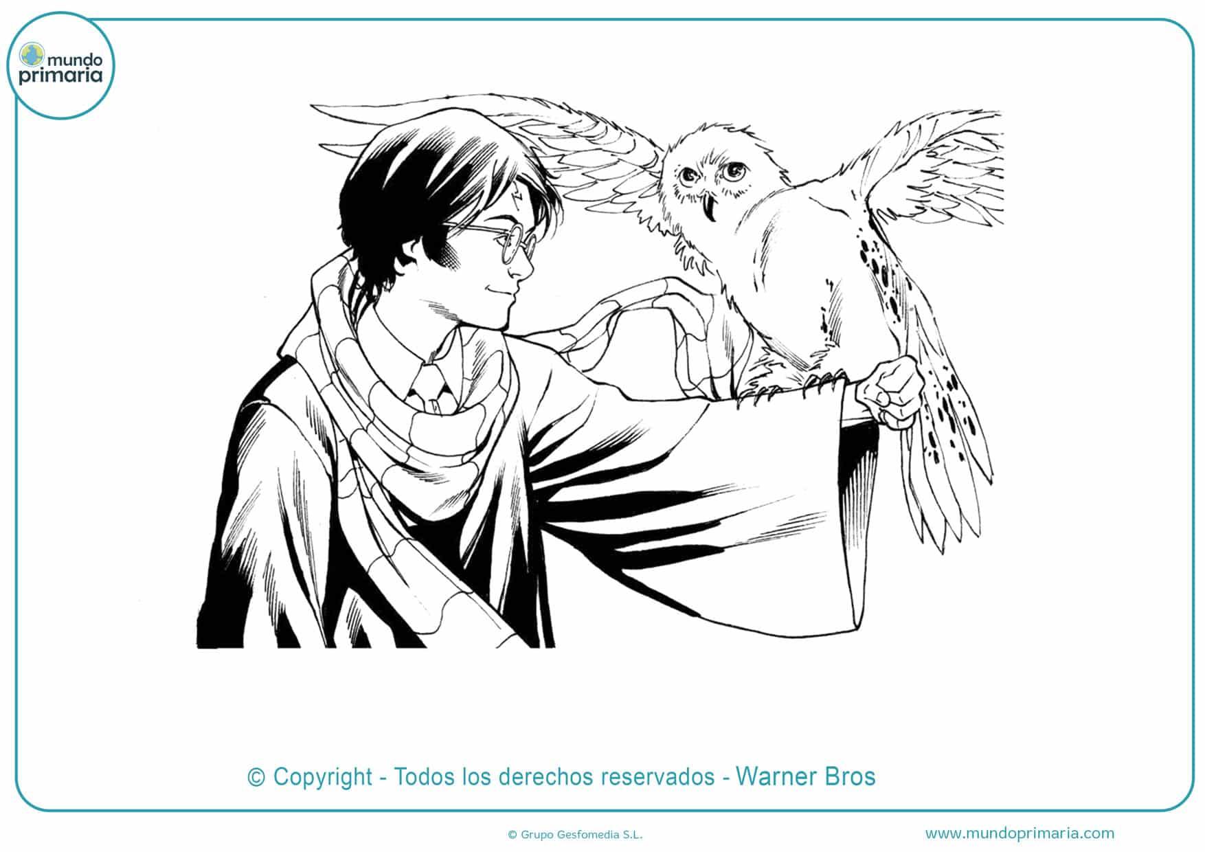 dibujos para colorear de harry potter y mascotas