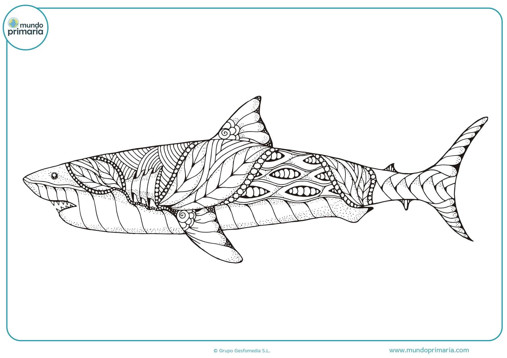 dibujos de tiburones para imprimir y colorear
