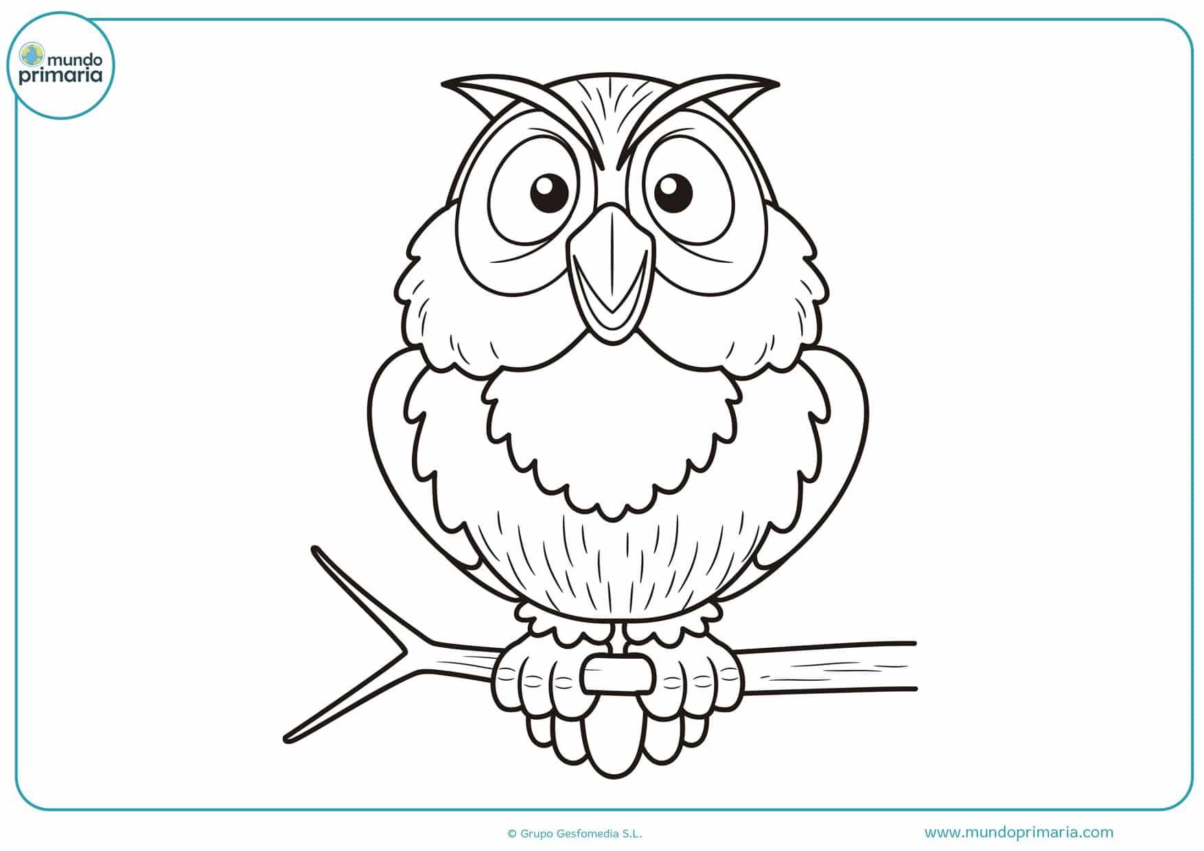 dibujos de búhos para colorear e imprimir