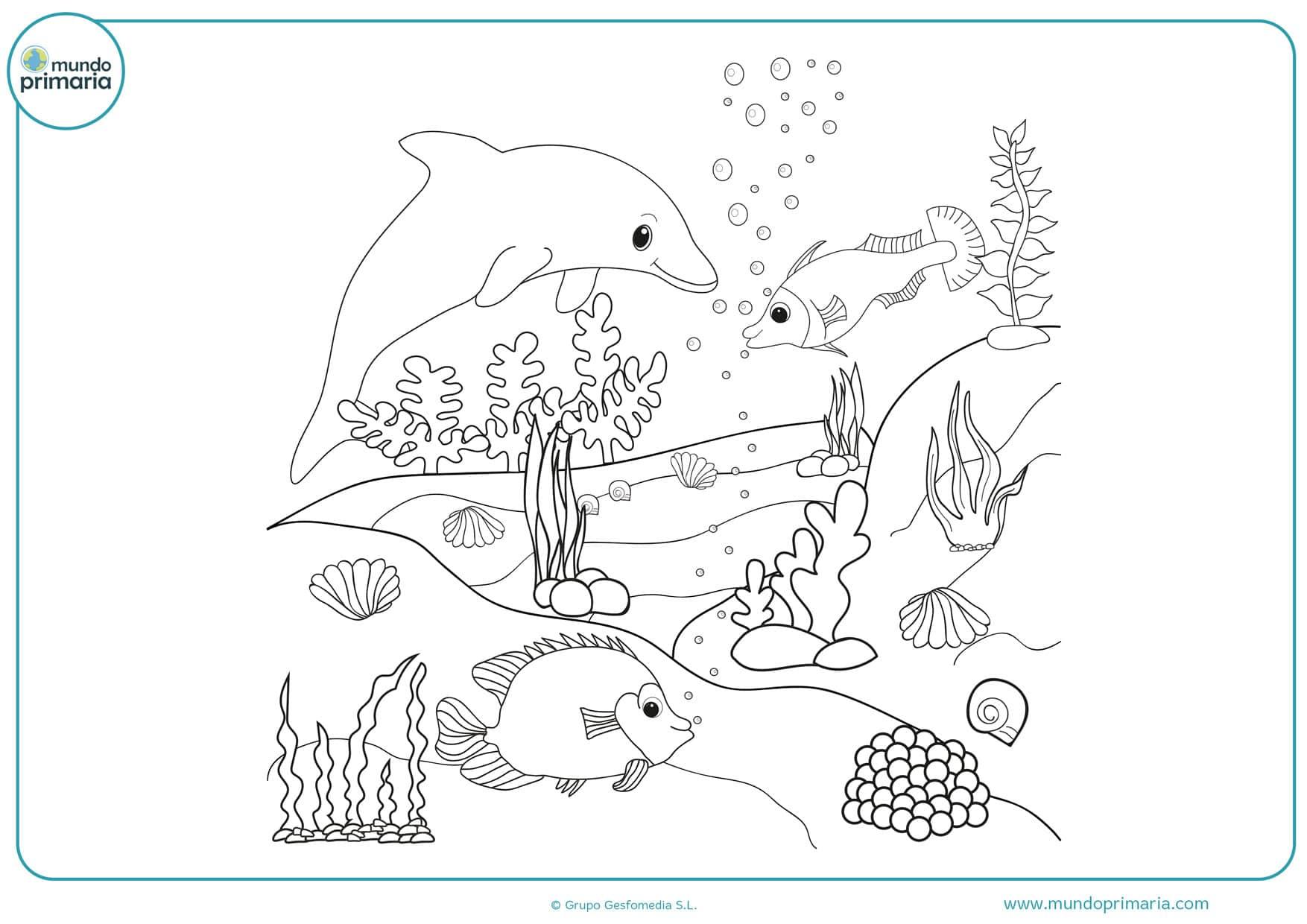 dibujos para colorear de peces y animales marinos