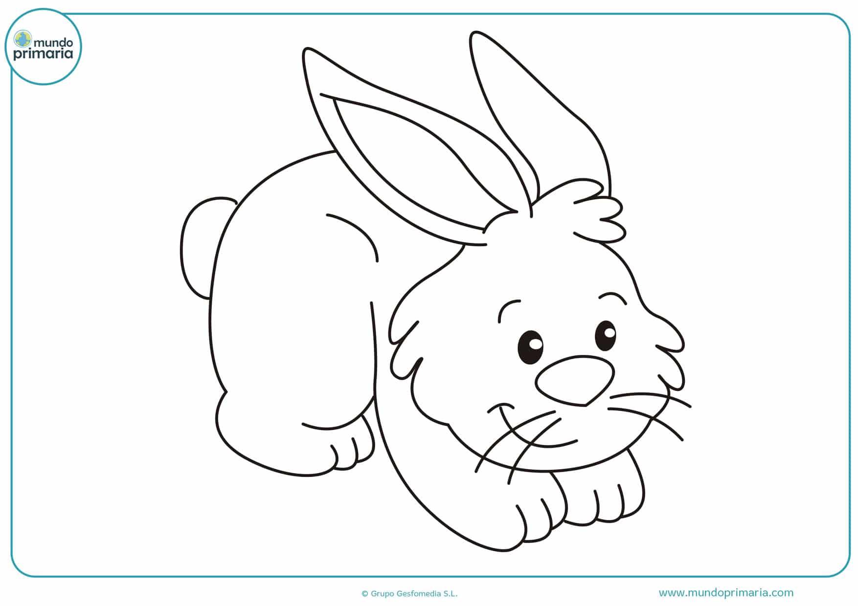 dibujos de conejos bebes tiernos para colorear