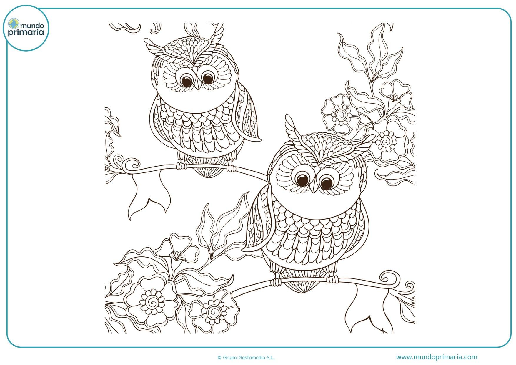 dibujos difíciles para colorear de búhos