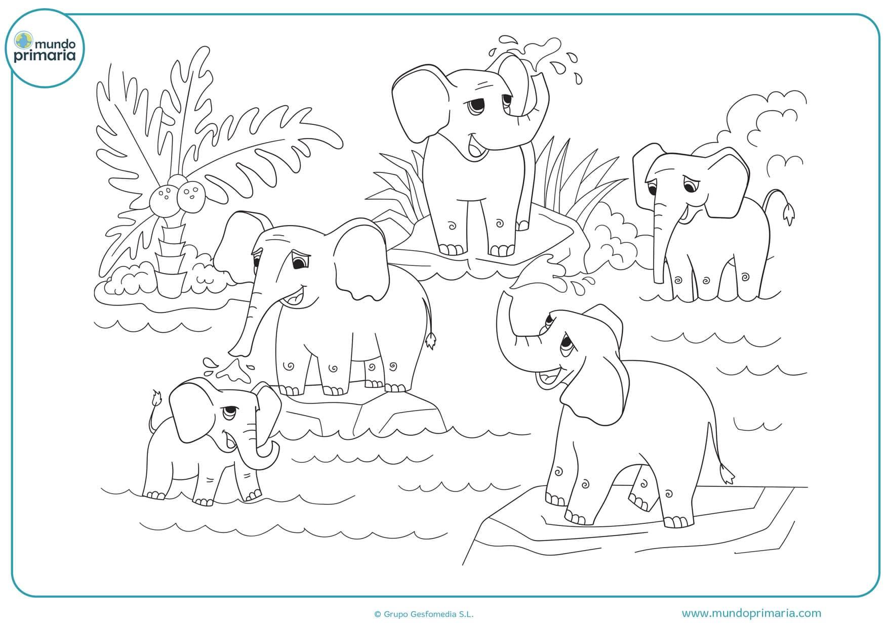 Dibujos De Elefantes Para Colorear E Imprimir