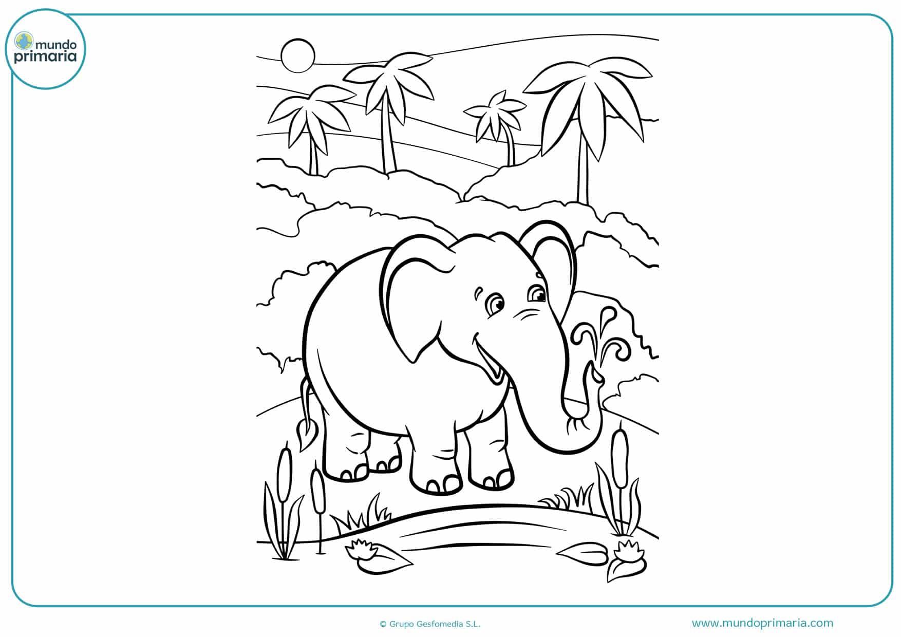 dibujos de elefantes para imprimir y colorear
