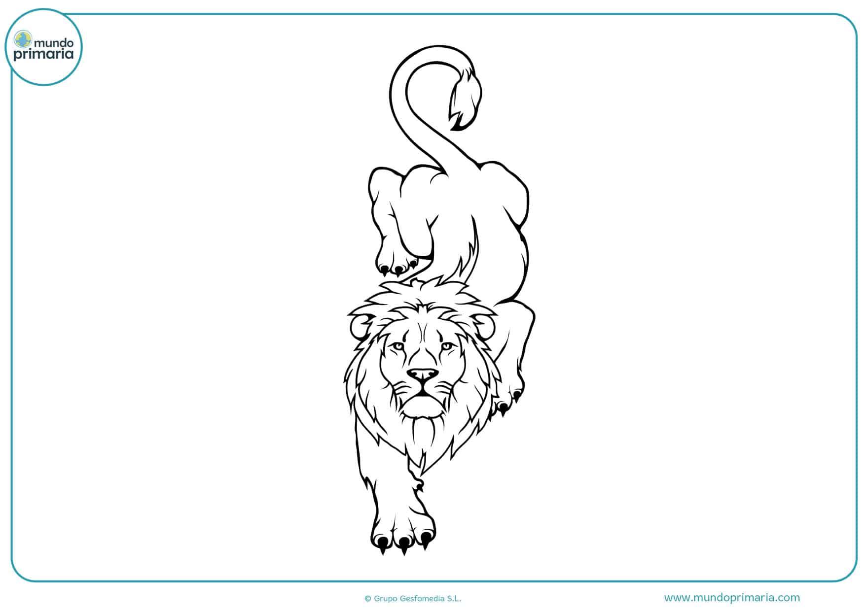 dibujos fáciles de leones para colorear