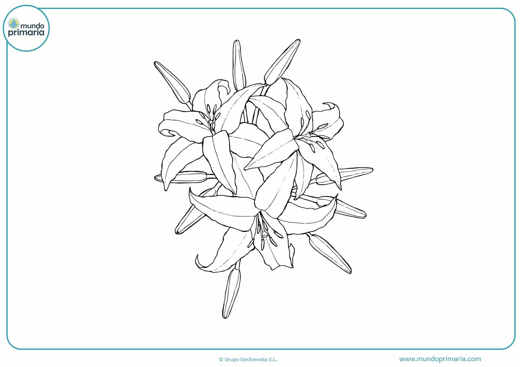 dibujos de flores para colorear infantiles