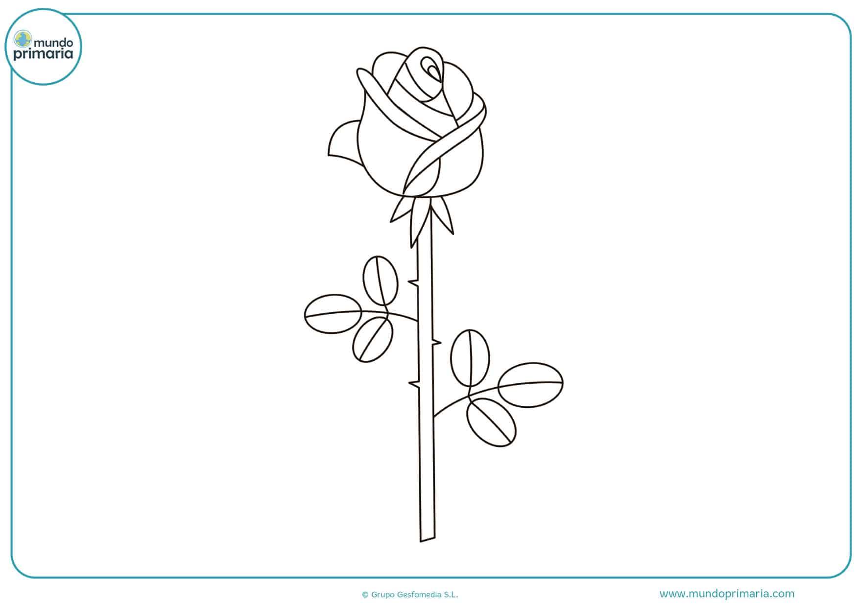 dibujos de flores para colorear niños