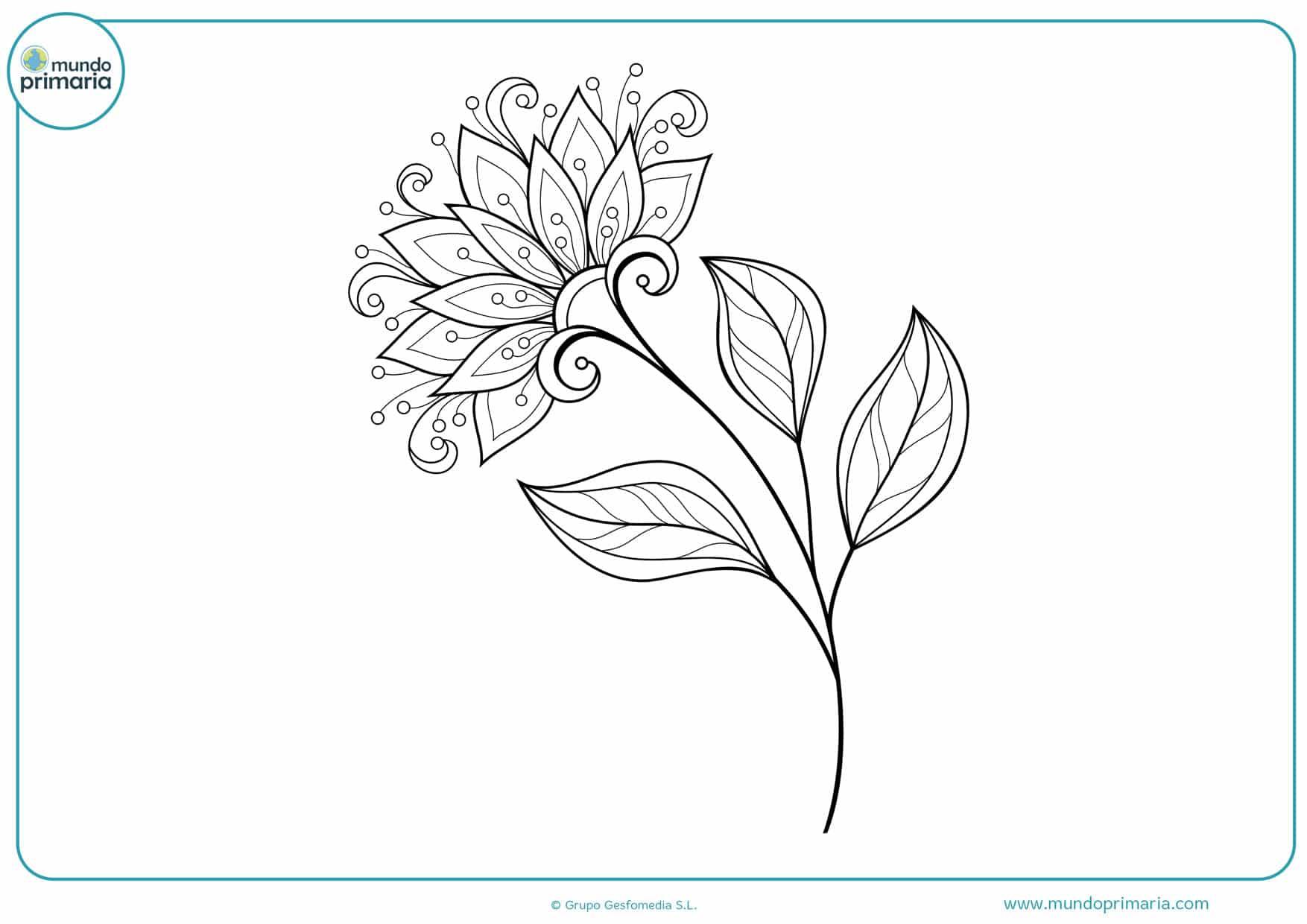 Dibujos De Flores Para Colorear Bonitas Y Faciles De Pintar