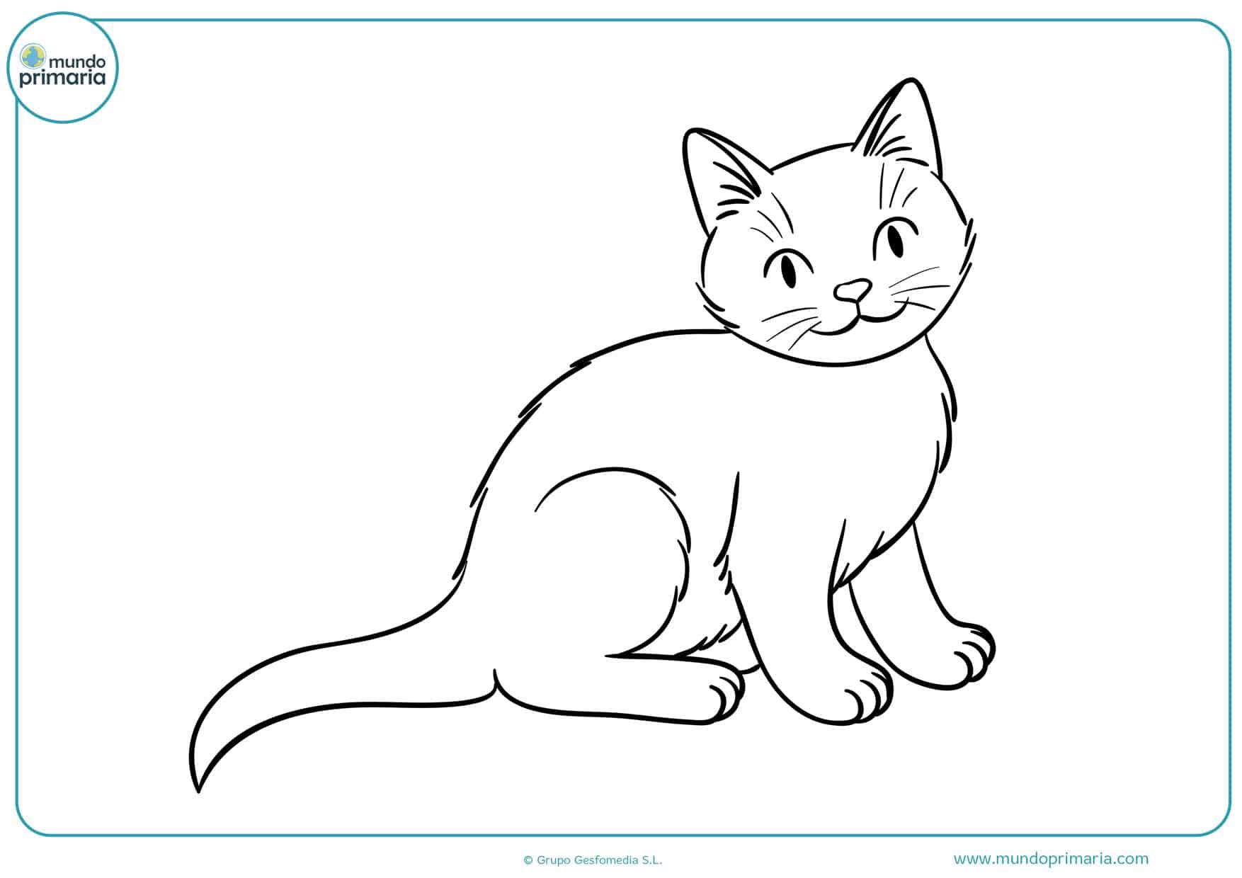 dibujos de gatos sentados para colorear