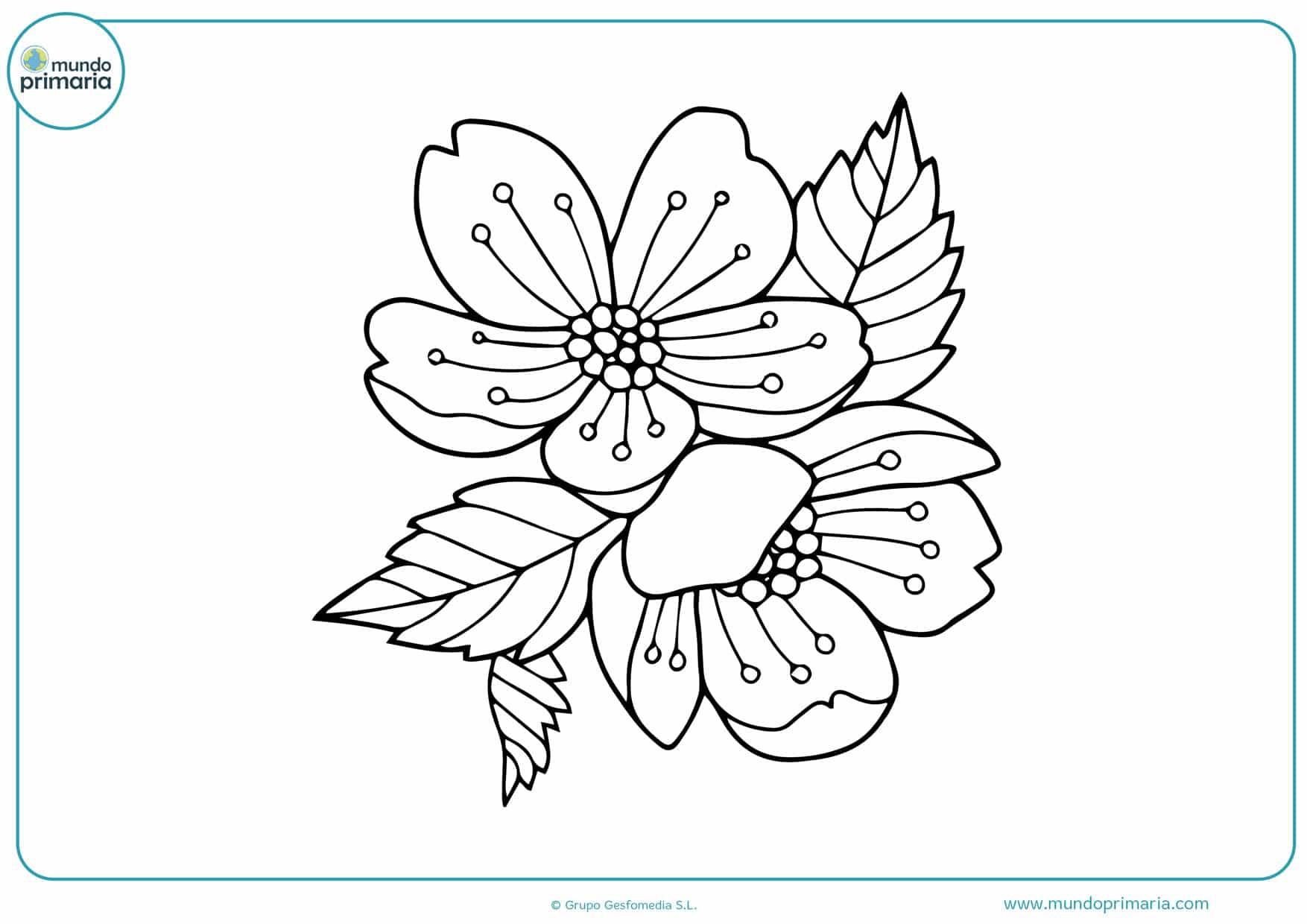 dibujos de guirnaldas de flores para colorear