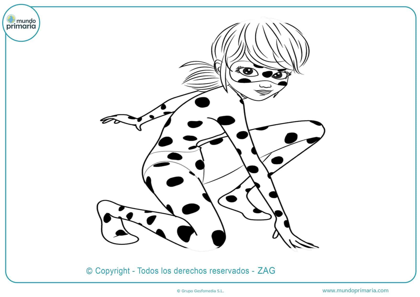 dibujos de ladybug y cat noir para colorear