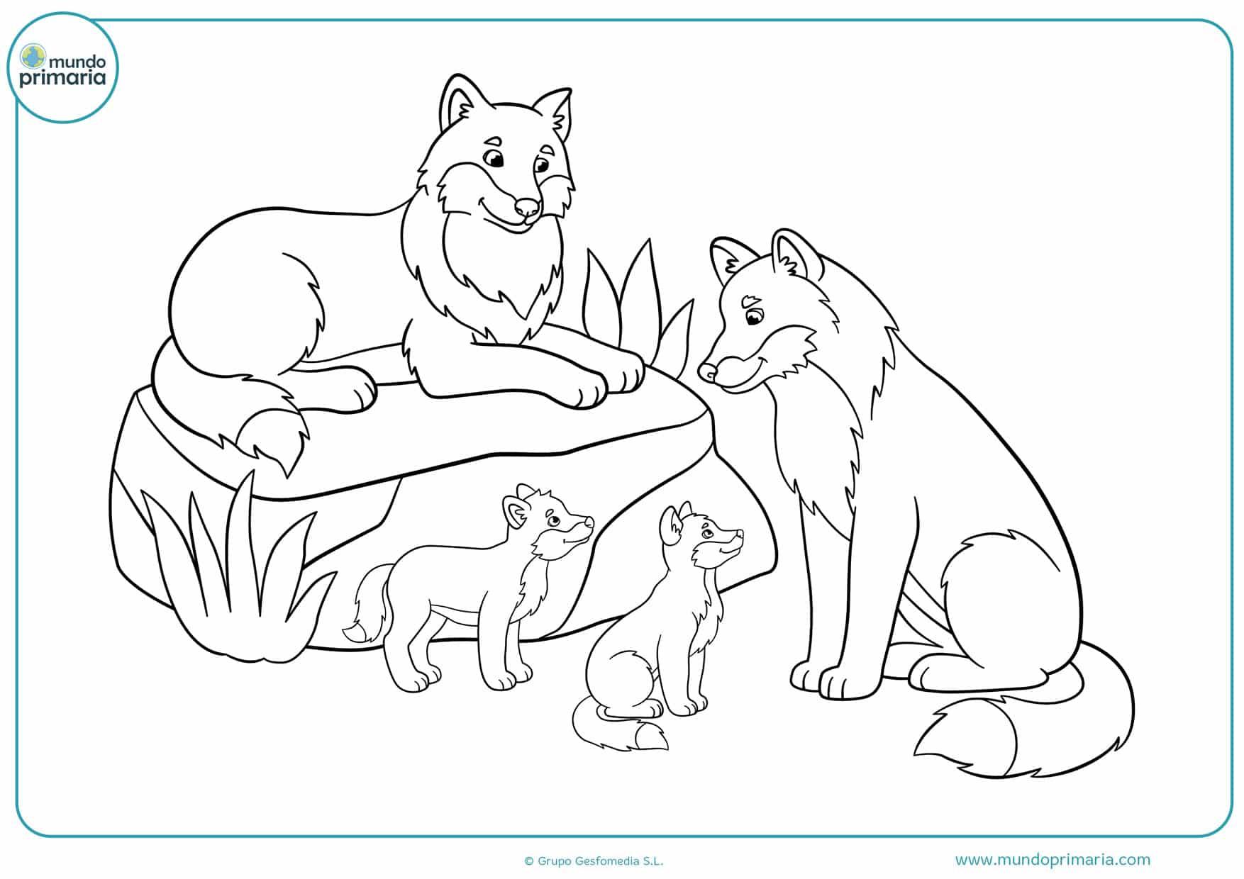 Раскраска волчонок и мама