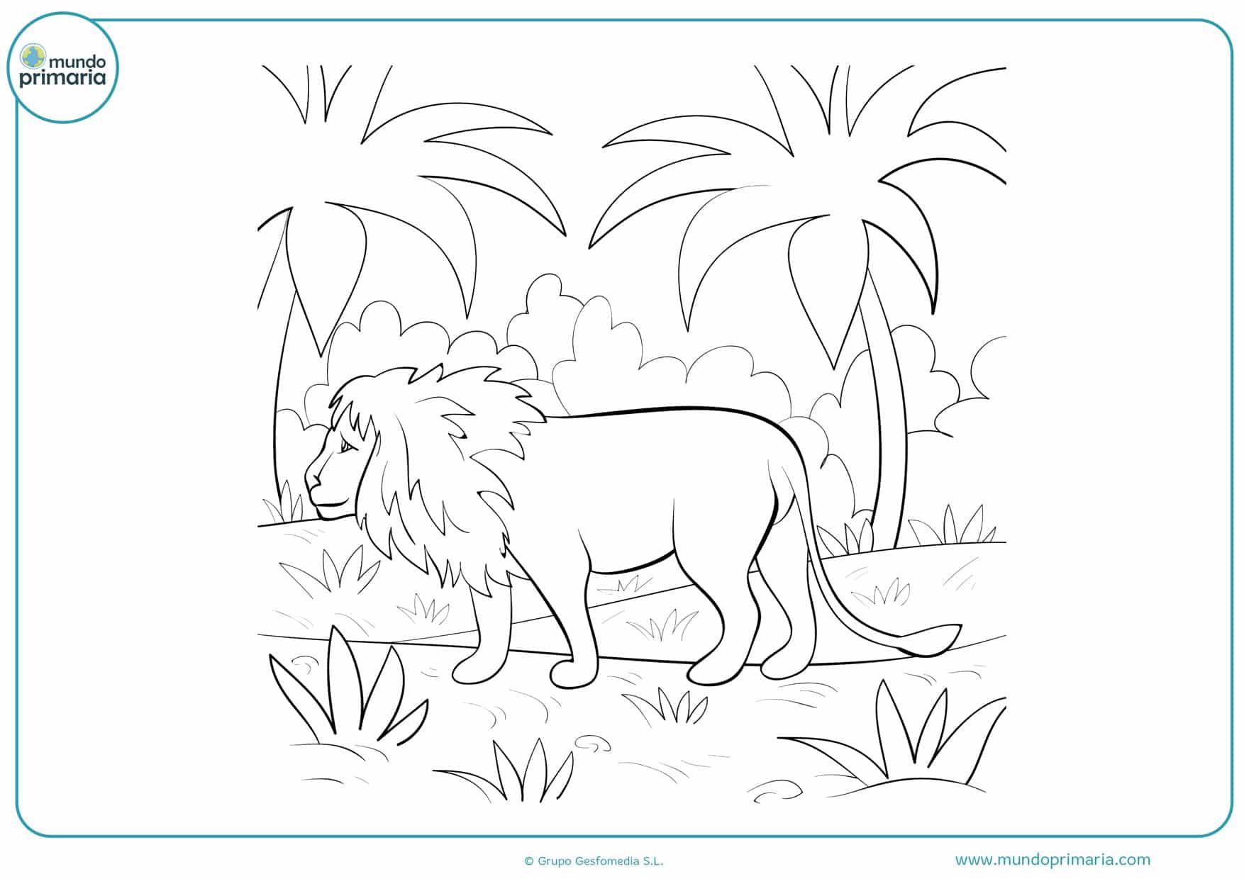 dibujos para colorear de animales leones