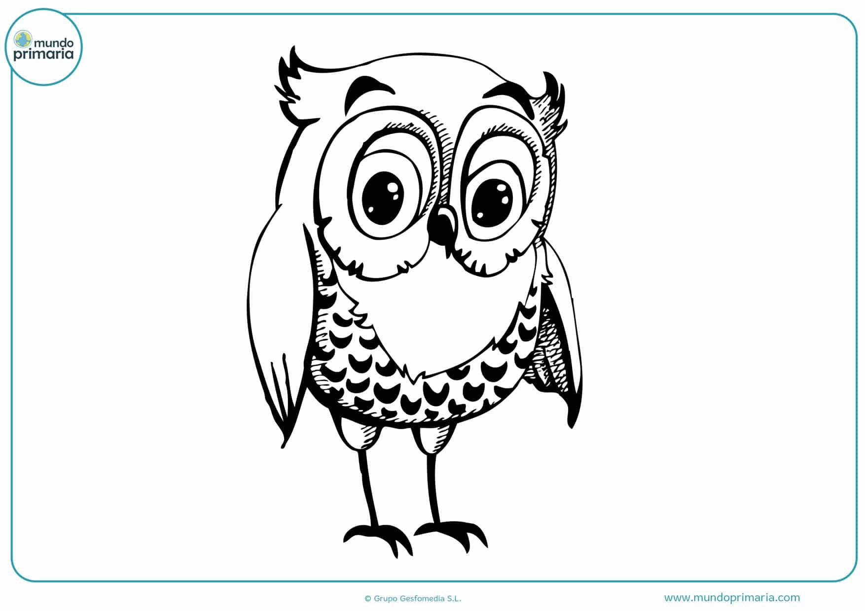 dibujos para colorear de búhos infantiles