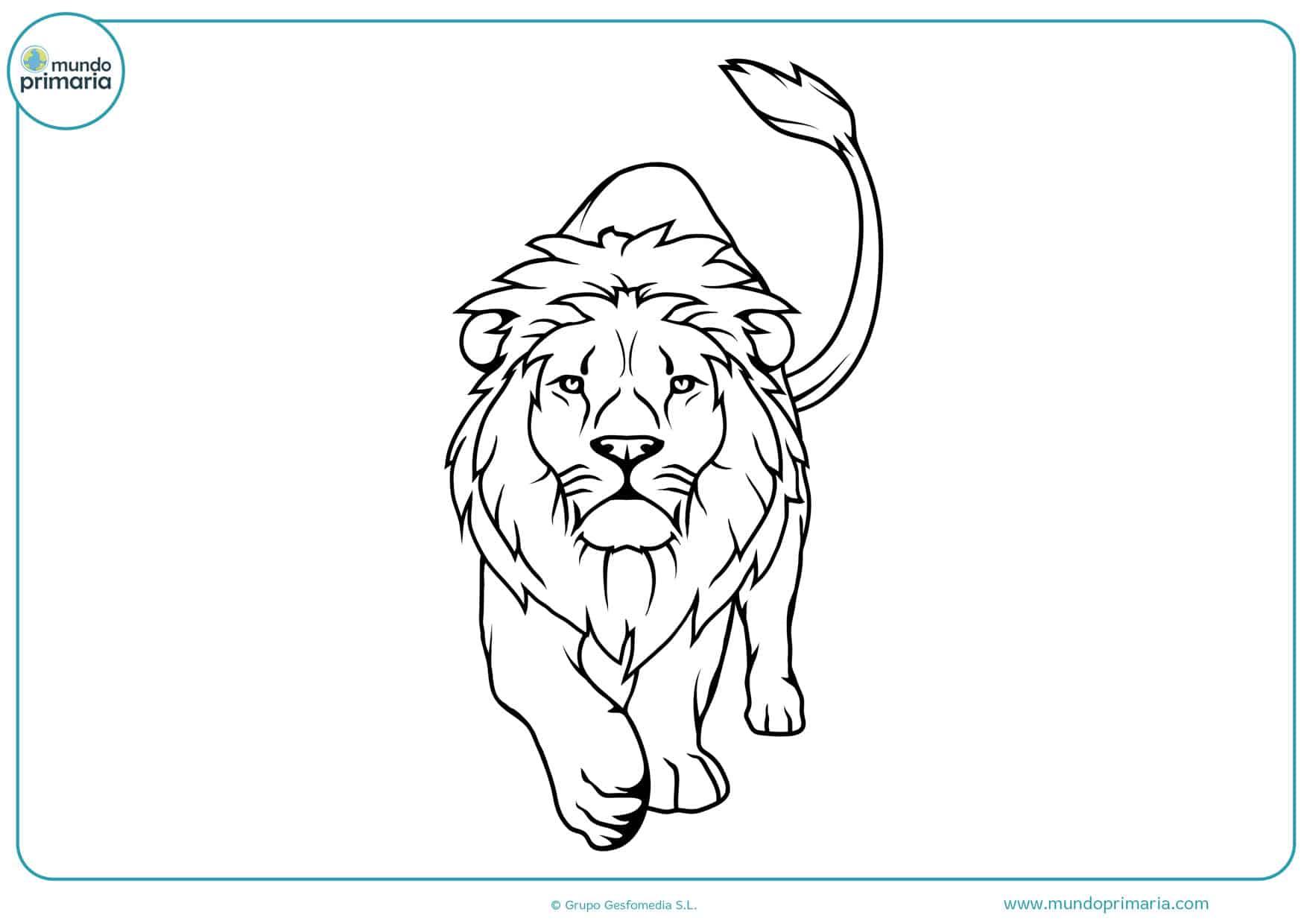 dibujos para colorear e imprimir de leones