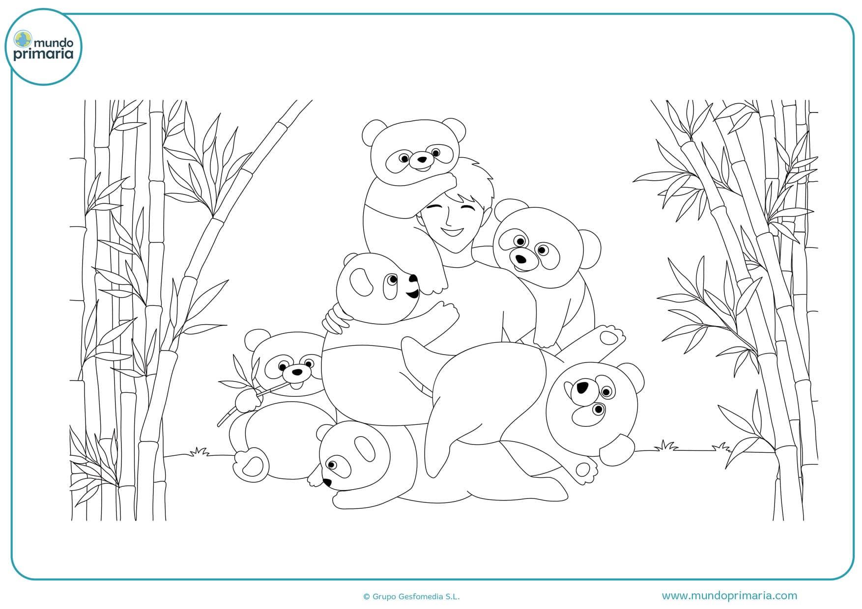 dibujos para colorear de osos pandas bebes