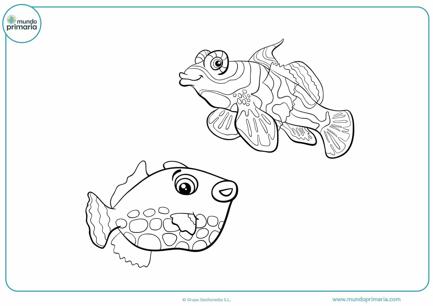 dibujos para colorear de peces tropicales