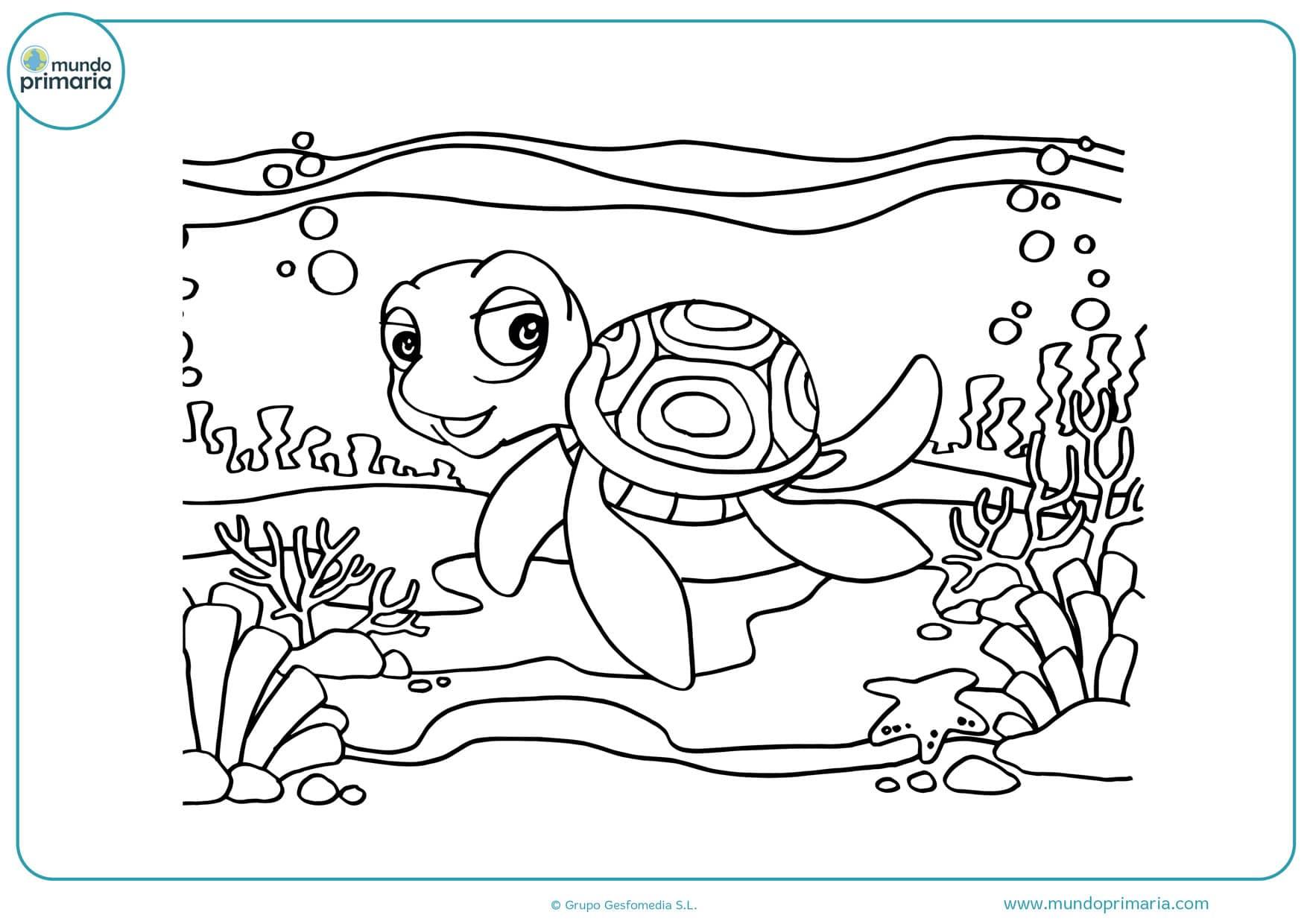 dibujos para colorear de tortugas mar