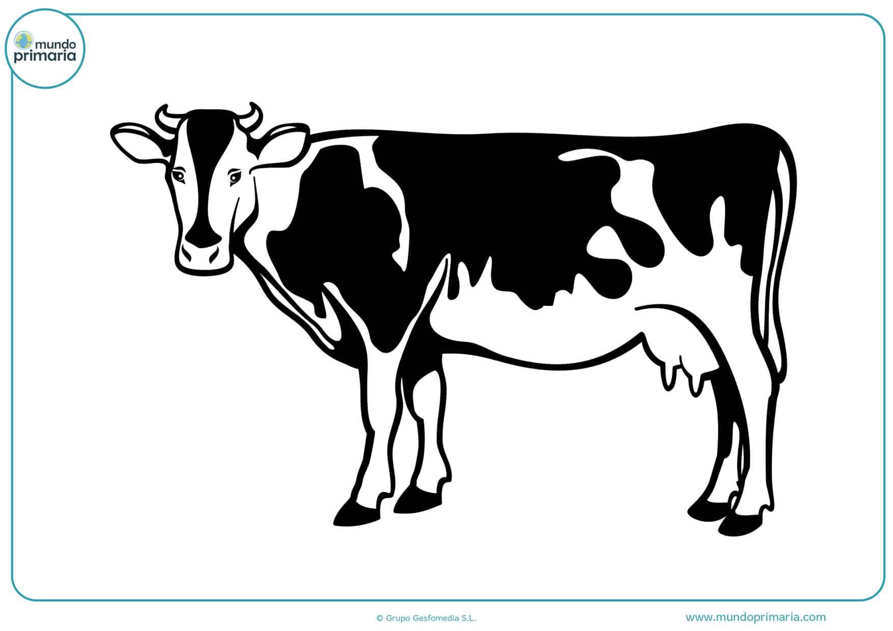 dibujos para pintar vacas