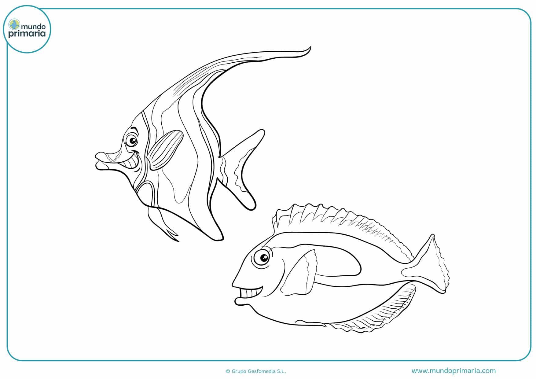 dibujos de peces en el mar para colorear