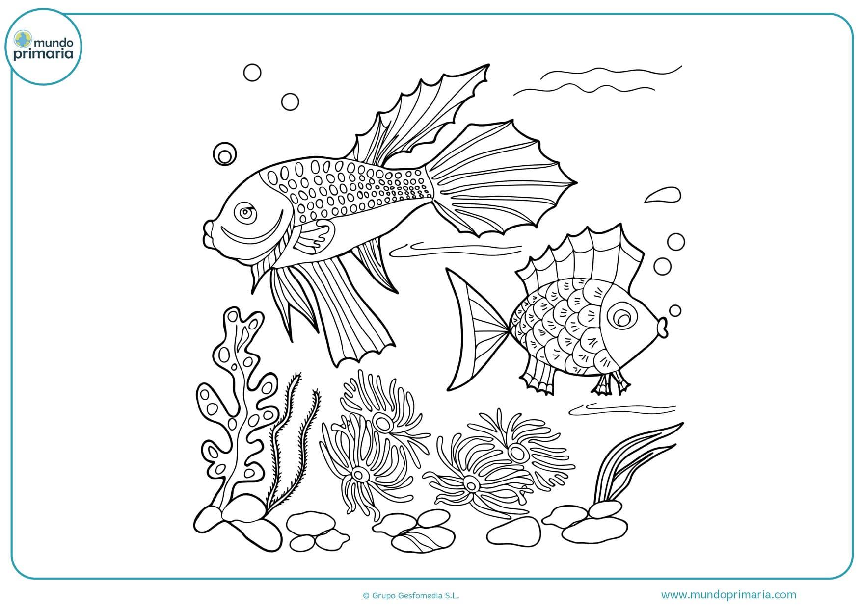 dibujos de peces mar para pintar