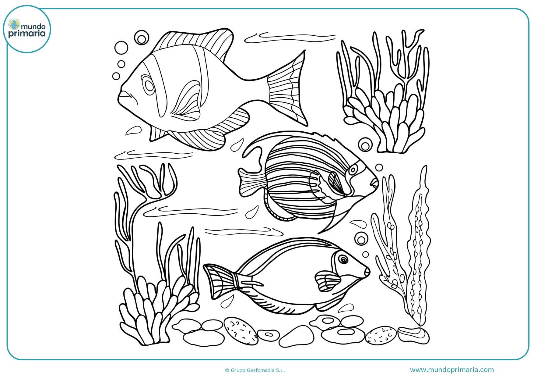 dibujos de peces para colorear e imprimir