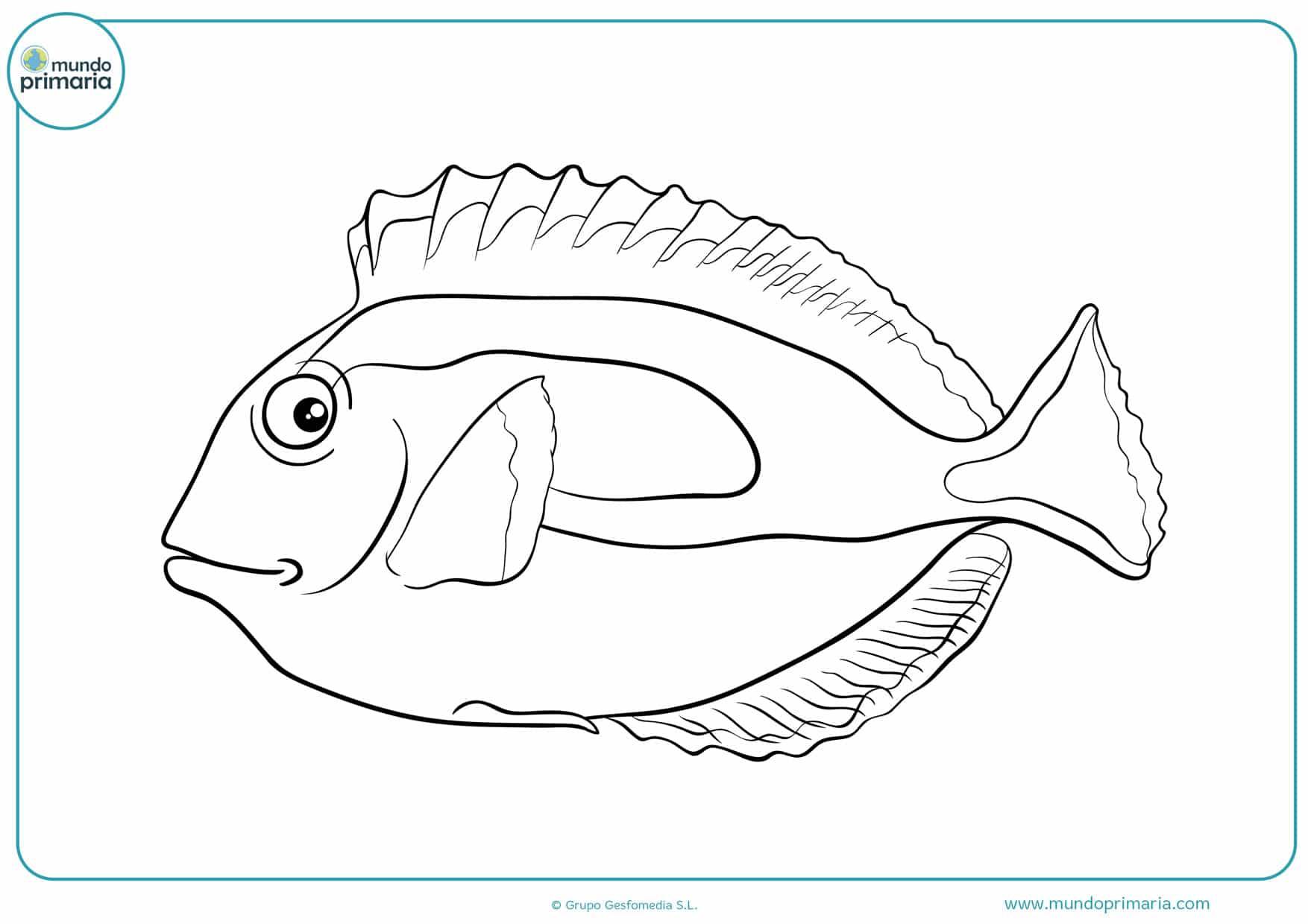 dibujos de peces para colorear en linea