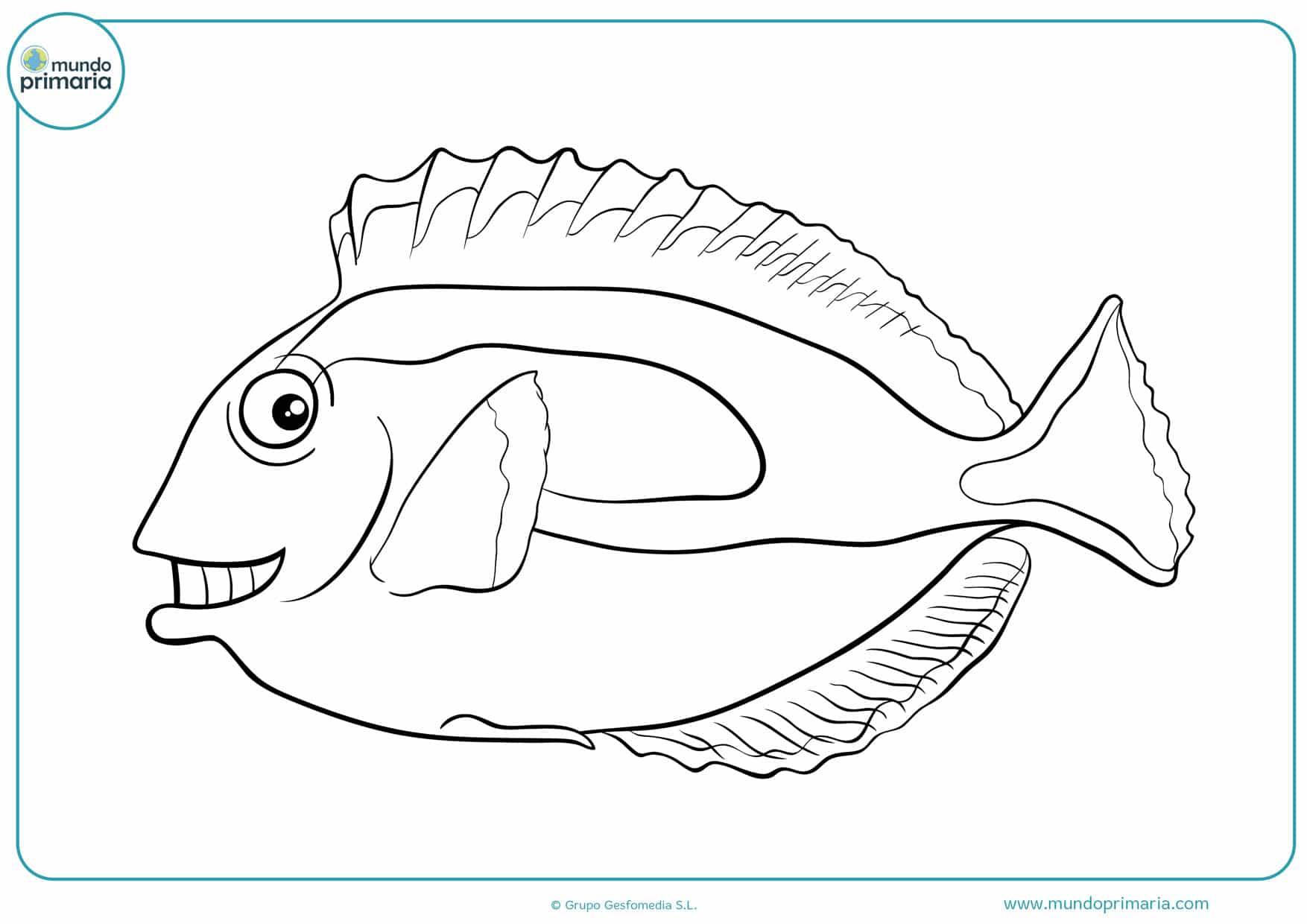 dibujos de peces para colorear para niños