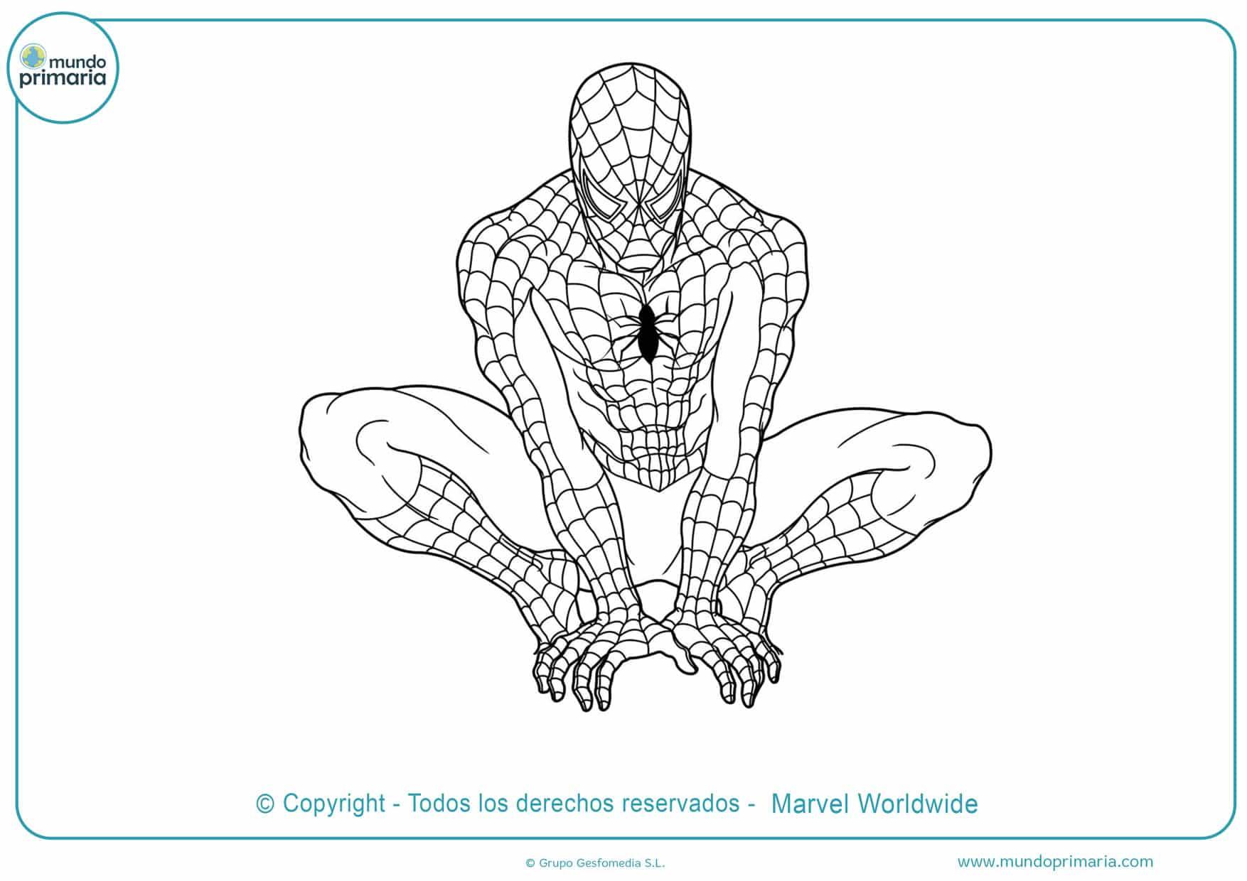 dibujos de spiderman para colorear grandes