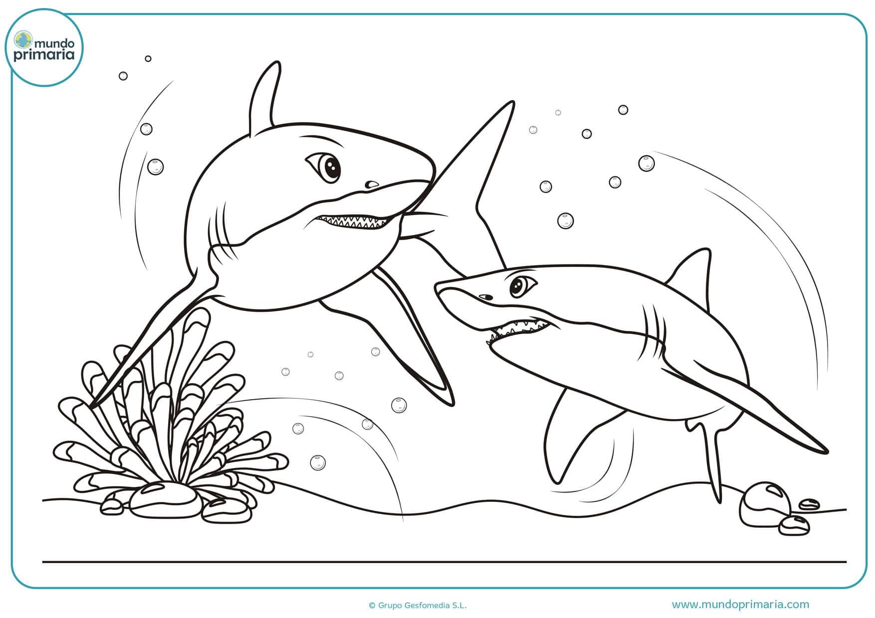 dibujos para colorear de tiburones asesinos