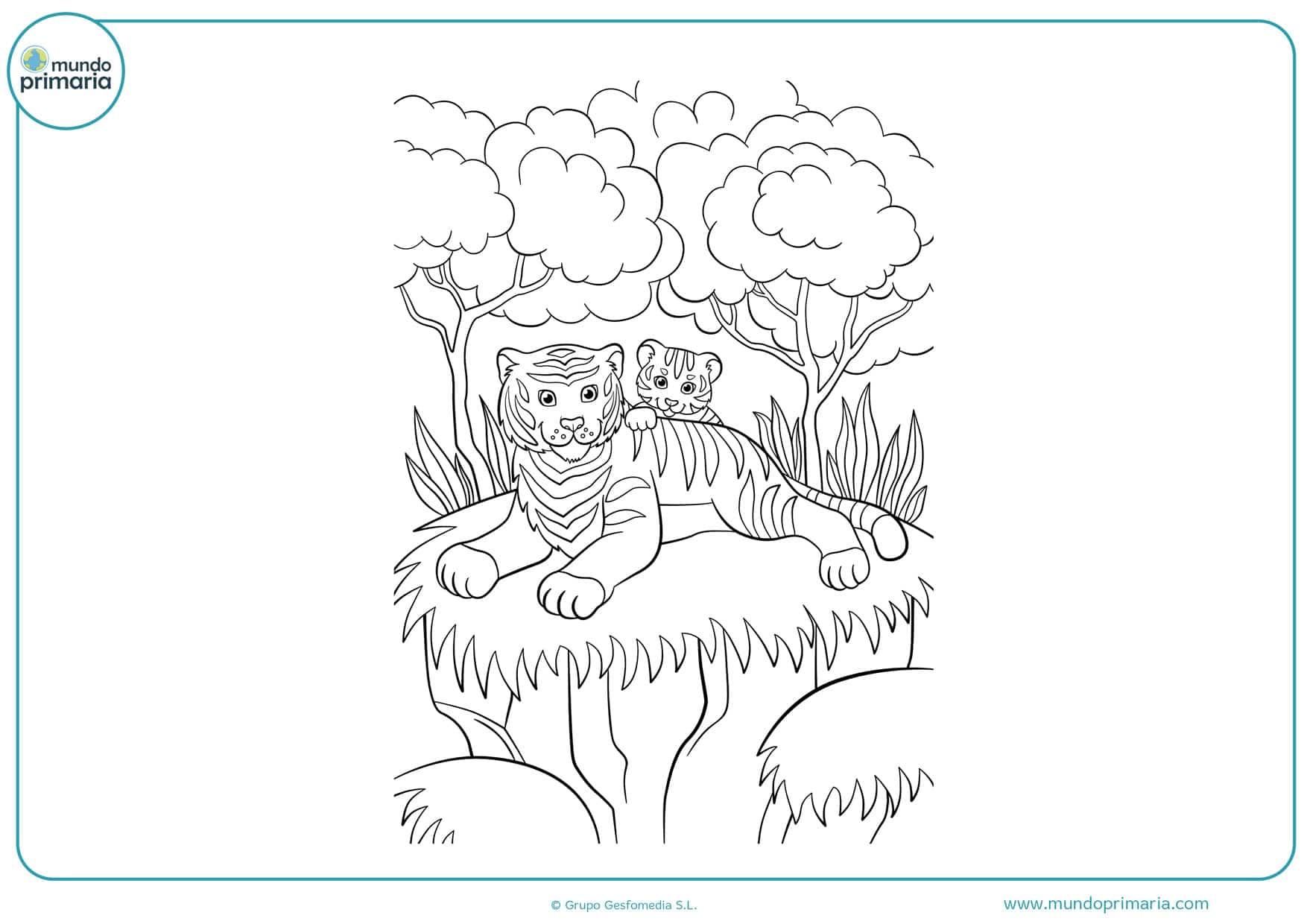 dibujos de tigres para colorear gratis