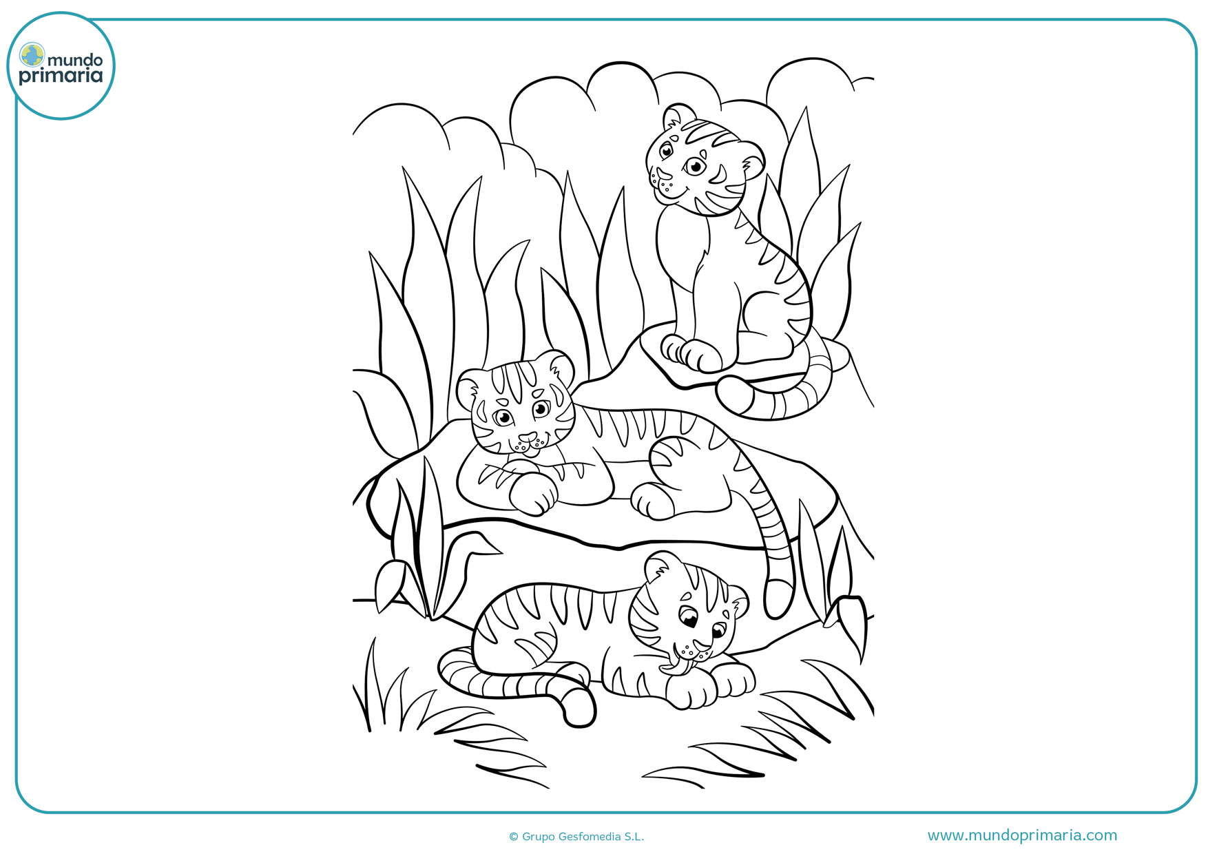 Dibujos De Tigres Para Colorear Mundo Primaria