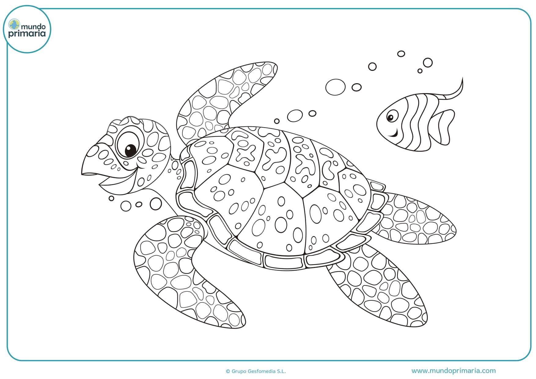 dibujos de tortugas de mar para colorear