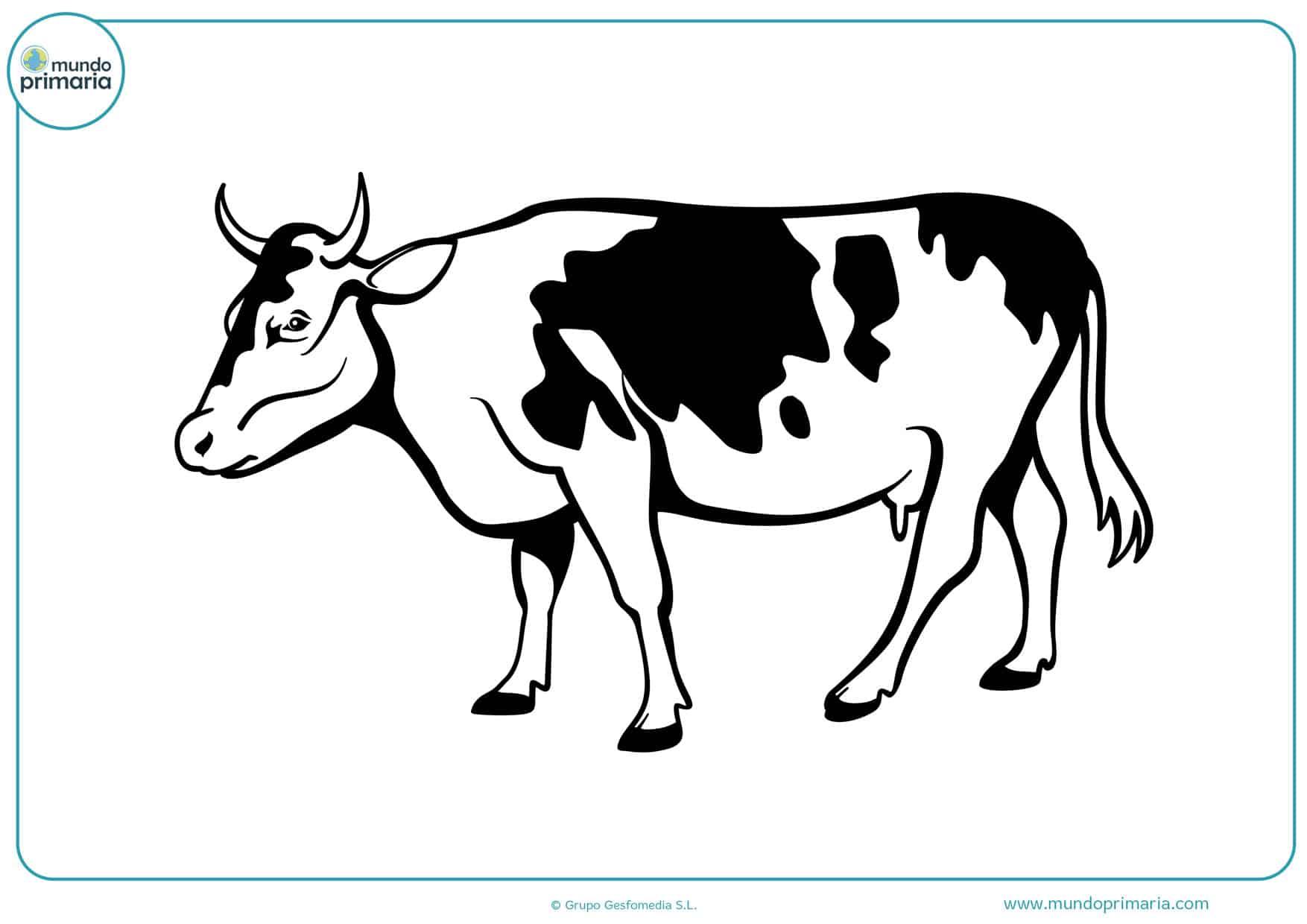 dibujos de vacas bravas para colorear