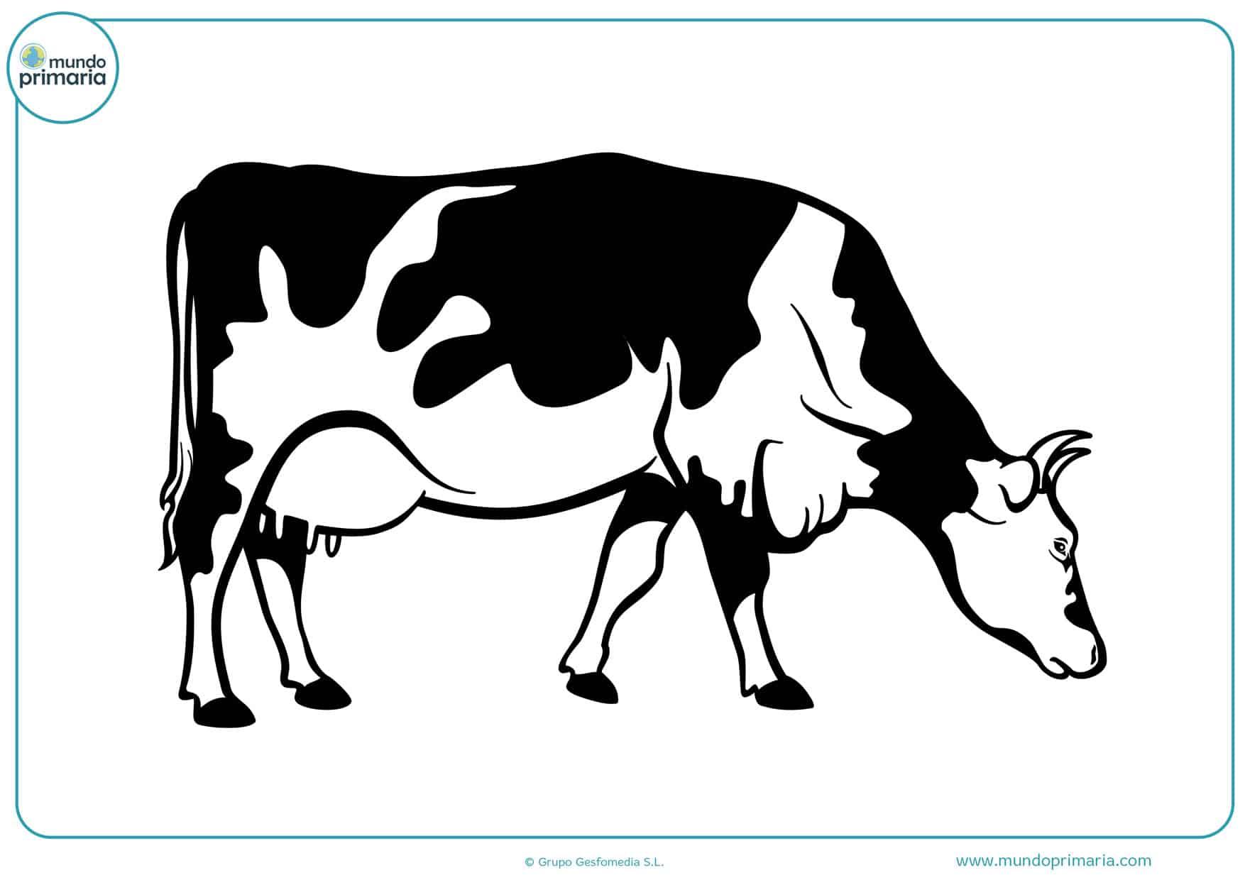 dibujos de vacas indias para colorear