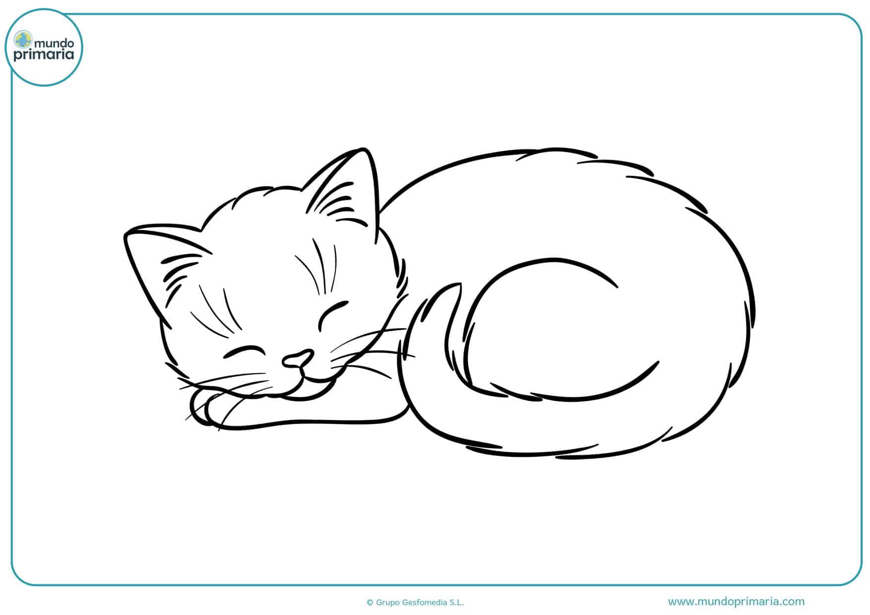 imágenes de gatos infantiles para colorear