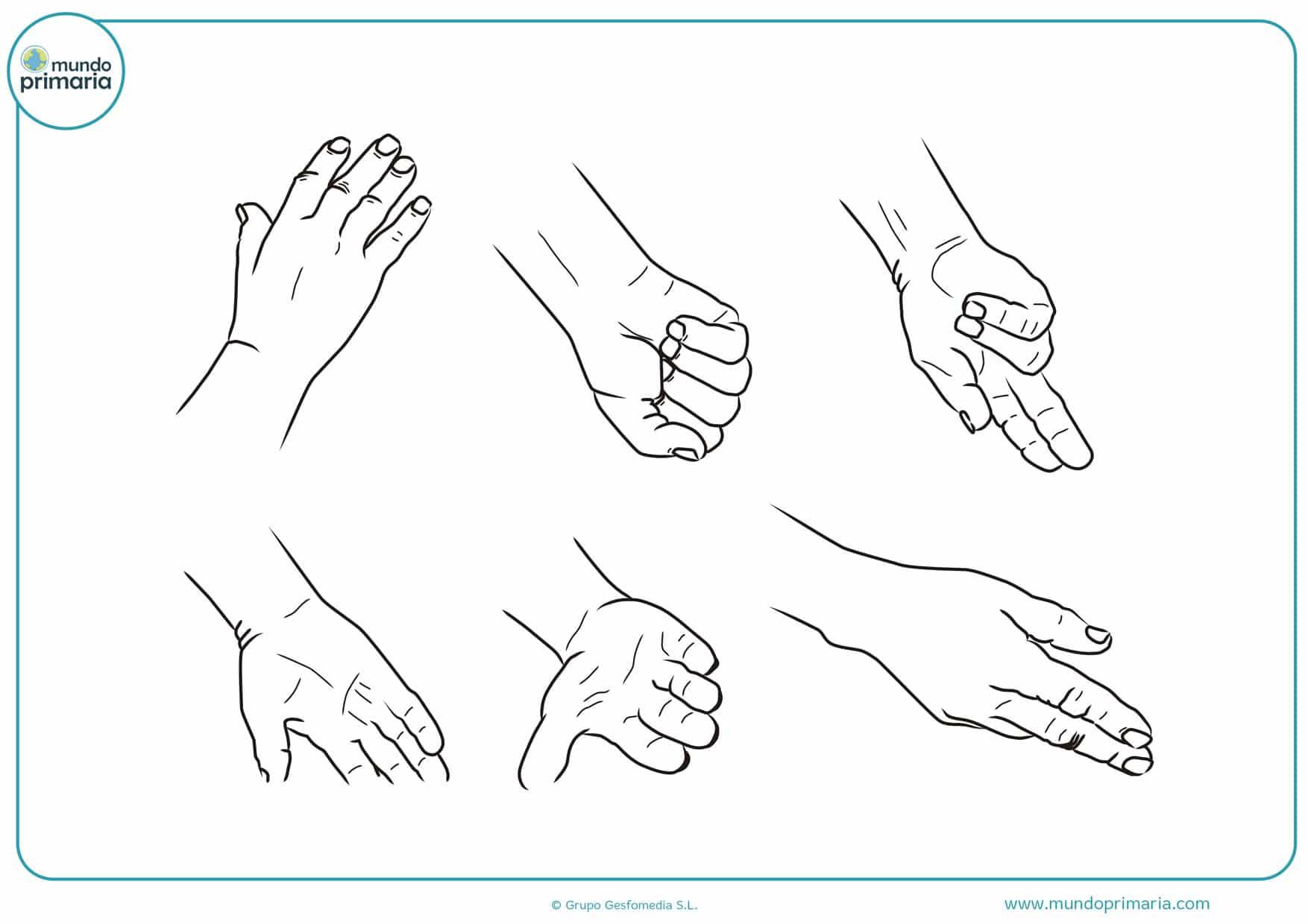 manos para colorear