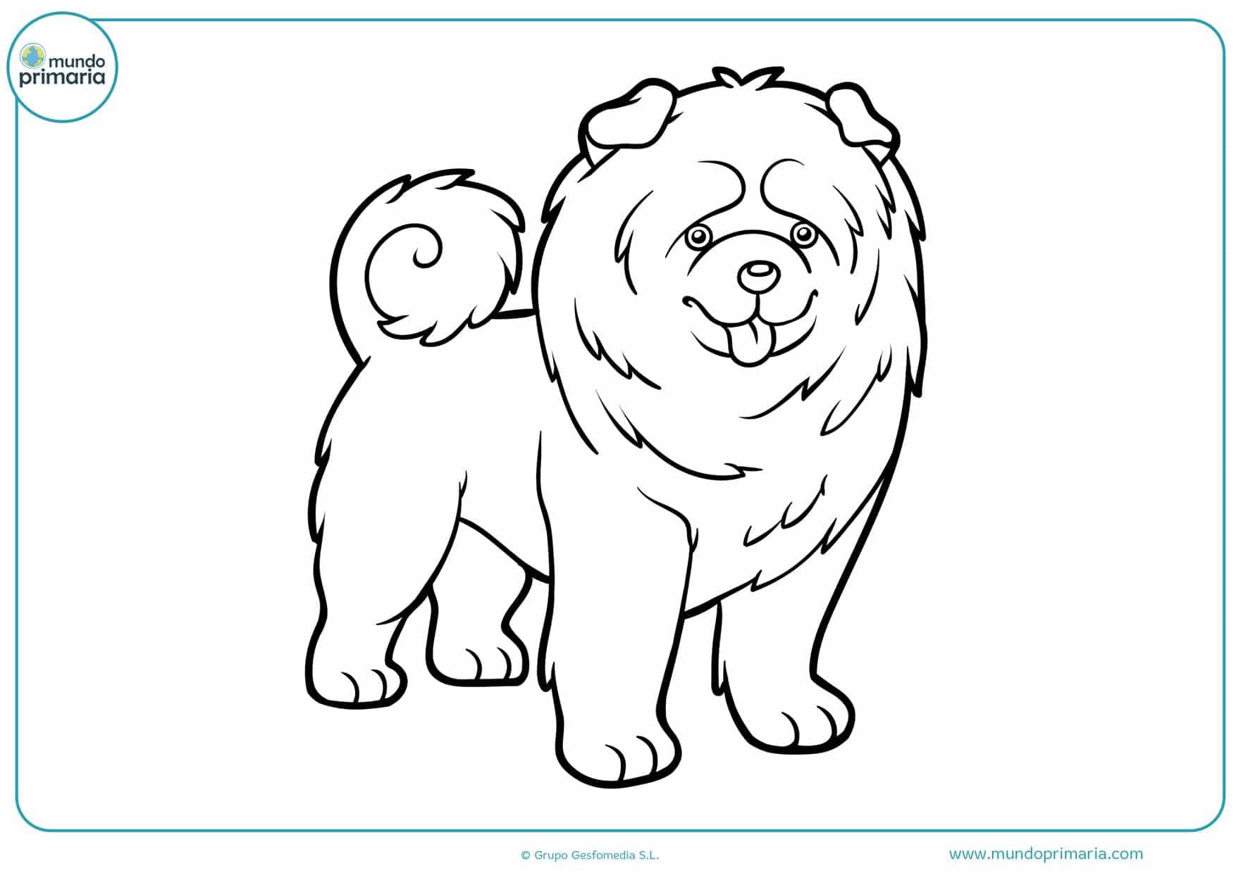 perros de dibujos para colorear