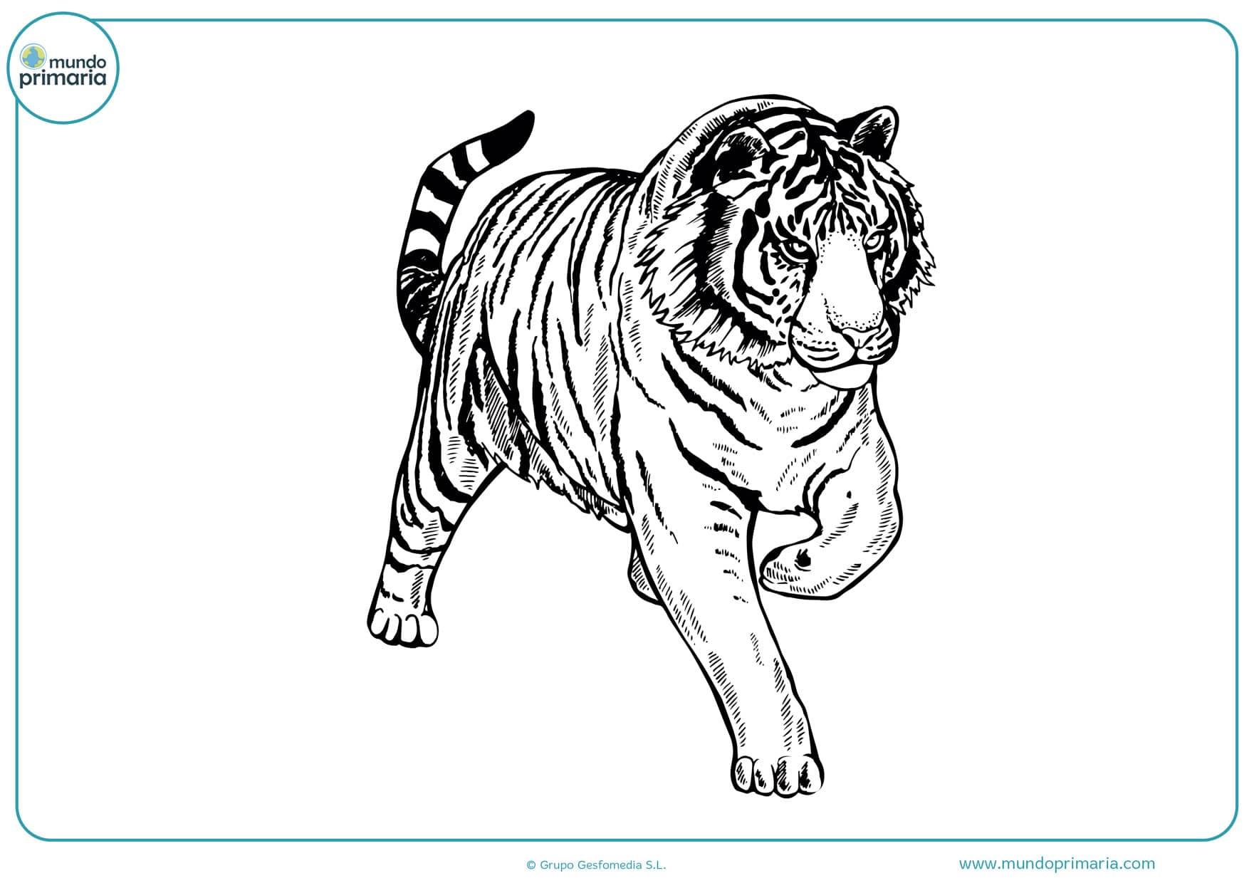 dibujos fáciles a lápiz para colorear