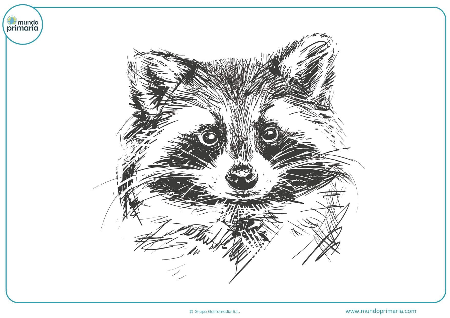 dibujos a lápiz divertidos para colorear