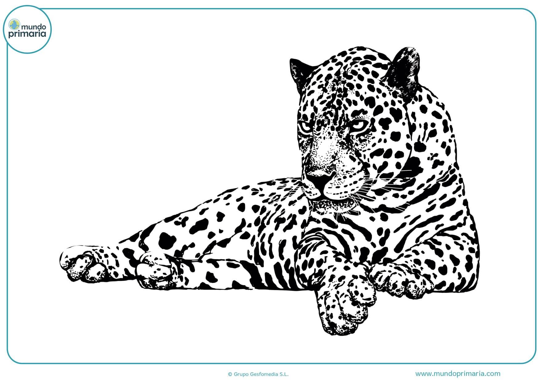 dibujos para imprimir y colorear a lápiz