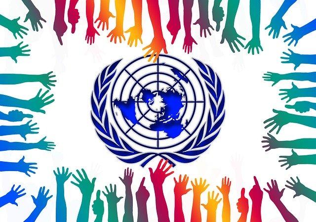 dia universal del niño y naciones unidas