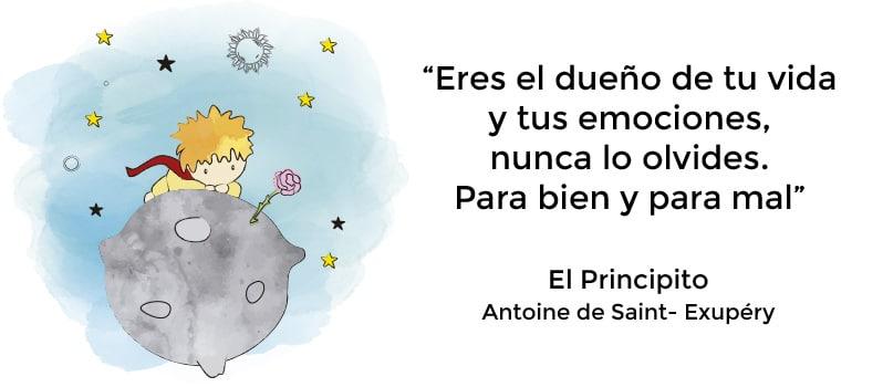 Novela El Principito