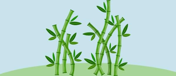 Cuento Cana Bambu