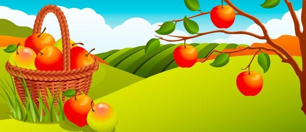 Beneficios Fruta